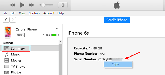 where to put iphone serial number