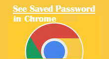 View password saved in Chrome