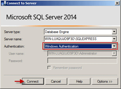 Select Windows Authentication to login SQL Server