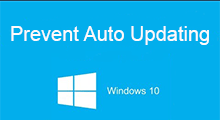 prevent Windows 10 from auto updating
