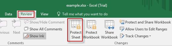 click Protect Sheet