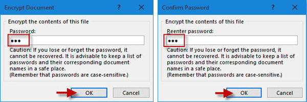 Type Excel document open password