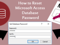 reset access database password