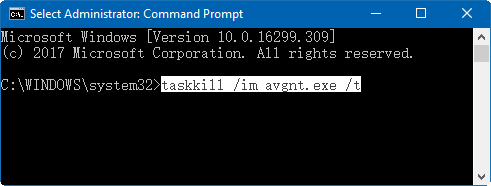 Execute the taskkill command