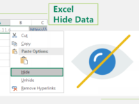 Excel hide data