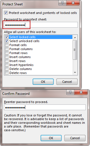 set password to protect the excel worksheet