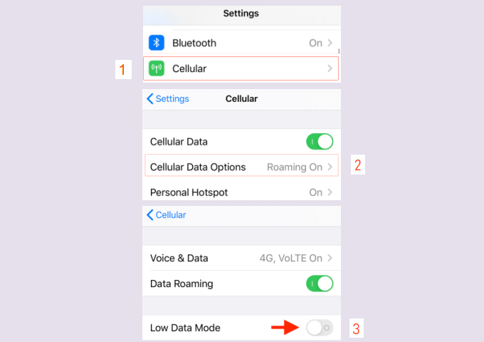 Enable Low Data Mode for Cellular Data
